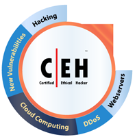 Ethical hacking- EC-Council (CEH)